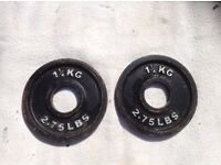 2 x 1.25kg Bodypower Olympic Cast Iron Weights