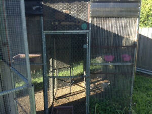 Strong Bird Cage East Maitland Maitland Area Preview