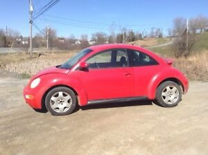 Vw beetle need gone