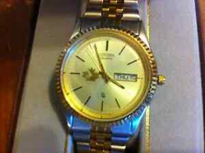 Summer time .. Citizen quartz watch