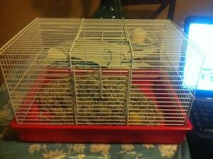 hamster cage plus more