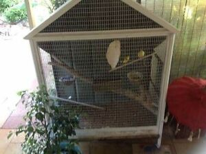 Canaries and cage Golden Bay Rockingham Area Preview