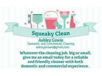 Experienced cleaner availible