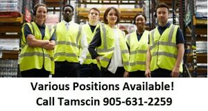 WALK IN FOR TUESDAY GENERAL LABOUR JOBS IN BURLINGTON!