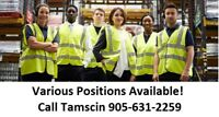General Labour Jobs from $15.00/hr to $19.89/hr!