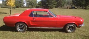 1968 Mustang Coupe 289