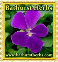 Herbs & Spices Medicinal Herbs, Teas, Essential Oils