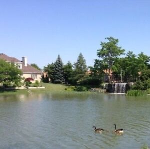 Southwood lakes rooms for rent Windsor Region Ontario image 1