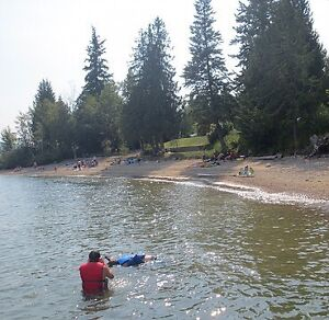 Beachfront cottage Shuswap lake vacation weeks. Pet friendly