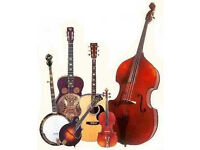 Enthusiastic FIDDLE/GUITAR PLAYER WANTED for amateur music project - EDINBURGH