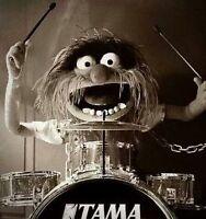 Drummer recherche band pour le plaisir