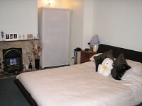 Large room to rent at Rosebery Ave, Cosham PO6 2PY, walking distance to the train station, QA, I.B.M