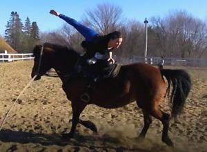 Cours d'équitation - Voltige équestre