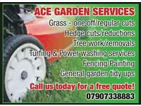 Ace garden services / Tree removal