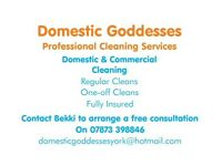 IMMEDIATE STARTS AVAILABLE!! 2 part time cleaners required