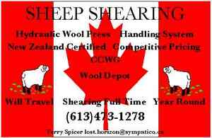 PROFESSIONAL SHEARING / CERTIFIED NEW ZEALAND SHEARER Cornwall Ontario image 1