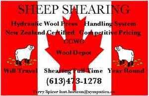 PROFESSIONAL SHEARING / CERTIFIED NEW ZEALAND SHEARER Cornwall Ontario image 1
