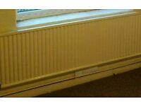 Seven single panel radiators