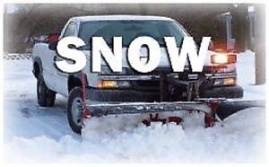 Travis's Snow Removal Fall Leaves Lawn Care Open Year Round Too Oakville / Halton Region Toronto (GTA) image 4