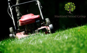 Affordable Grass Cutting in Etobicoke