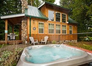 Mt. Baker Lodging - Cabin #11 - HOT TUB, BBQ, FIREPLACE, SLPS-6!