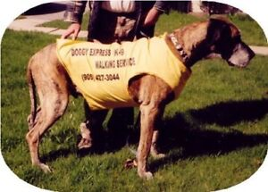 DOG WALKING SERVICE - SINCE 1998 (20th Anniversary)