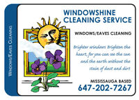 EAVES & DOWNSPOUT REPAIRS & PROFESSIONAL WINDOW CLEANER