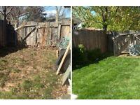 Grass cutting services- Garden maintenance -Garden tidy up near me-Lawn mowing guy - Local gardener