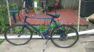 Bianchi mountain bike with 26 inch tires and 21 inch frame