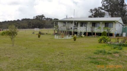Family Tree Change House and Acreage Emmaville Glen Innes Area Preview