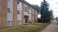 Furnished 2 bedroom apartment - Whyte Ave - for U of A Students