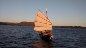 25-Foot Chinese Junk Sailboat with Fiberglass Hull and Trailer