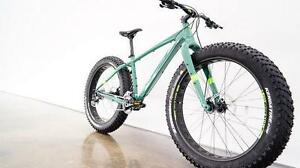 NEW JAMIS 2016 ROUGHNECK FAT TIRE MOUNTAIN BICYCLE