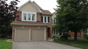 Beautiful House for Rent,4+2 bdrm,4 Bathroom in Newmarket!