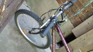 Mountain bike with 26 inch tires (pathfinder)
