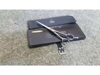 Brand new professional scissor
