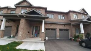 New Executive Townhouse in Longfields(Barrhaven)for RENT Nov 1st