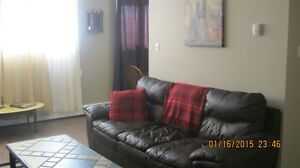 FULLY FURNISHED LG.1 BR APARTMENT