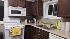 March 1 - female only - fully furnished beautiful large bedroom