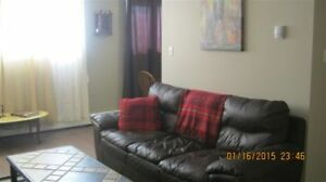 Large 1 BR Fully Furnished