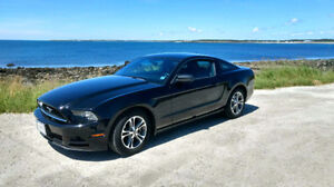 2014 Ford Mustang BASE Coupe (2 door)