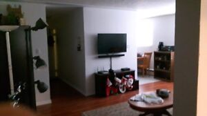apartment 1 bedroom -downtown