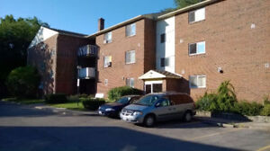 Huge and bright one bedroom apt for March 1st in St Catharines