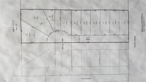 1.31 ACRES in CEDAR VALLEY DEVELOPMENT AREA!
