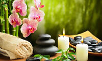 Get Your Feng Shui/Nutrition Assessment