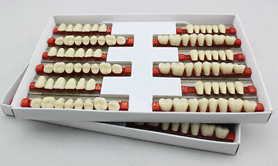 5box15sets Of 28 Dental Acrylic Resin Teeth Denture Material Full Mouth 503 A2