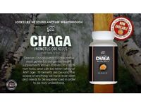 Total Life Changes- 100% ORGANIC CHAGA