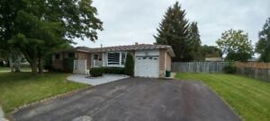 BARRIE HOME FOR RENT (BUNGALOW) NEWLY RENOVATED - Barrie, ON: