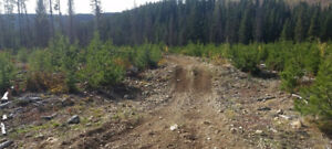 Placer Mining Claim on LOCKIE CREEK $5,000