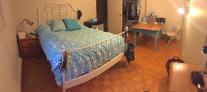 Female Sublet Room Available - 5 minute walk to UW! Kitchener / Waterloo Kitchener Area image 3